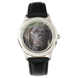 Adorable Chocolate Labrador Retriever Watch