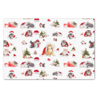 Adorable Christmas Kittens  Pattern Tissue Paper