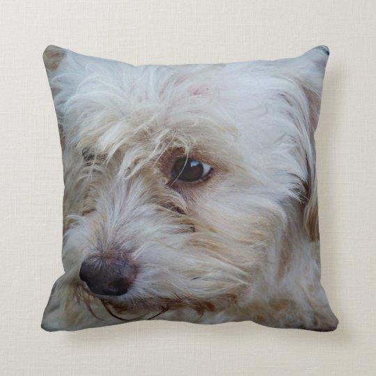 Adorable Cockapoo Puppy Mojo throw pillow