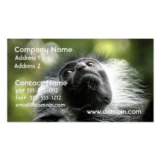 Adorable Colobus Monkey Business Card Templates