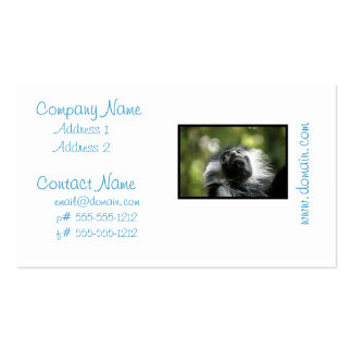 Adorable Colobus Monkey Business Cards