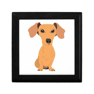 Adorable Dachshund Small Square Gift Box