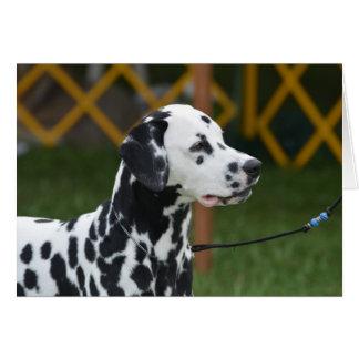 Adorable Dalmatian Card