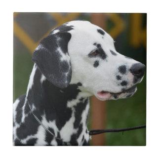 Adorable Dalmatian Small Square Tile