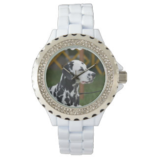 Adorable Dalmatian Watch