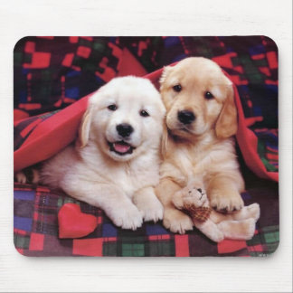 Adorable Dog Photography Cards, Gifts - Customize Mouse Mat