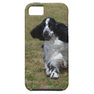 Adorable English Cocker Spaniel iPhone 5 Cover
