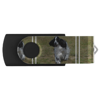 Adorable English Cocker Spaniel USB Flash Drive