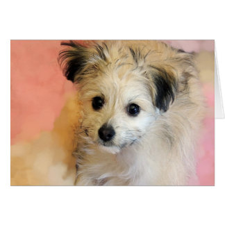 Adorable Floppy Ear Rescue Puppy Greeting Card