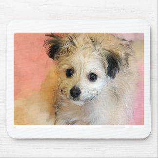 Adorable Floppy Ear Rescue Puppy Mousepads