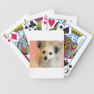 Adorable Floppy Ear Rescue Puppy Poker Deck