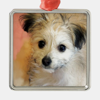 Adorable Floppy Ear Rescue Puppy Silver-Colored Square Decoration