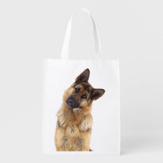 Adorable funny german shepherd portrait