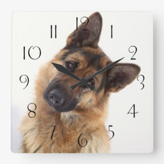 Adorable funny german shepherd portrait square wall clock