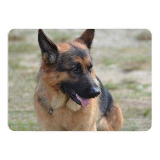 Adorable German Shepherd 13 Cm X 18 Cm Invitation Card