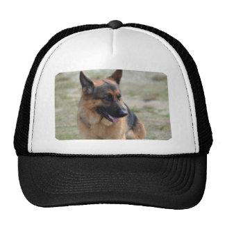Adorable German Shepherd Cap