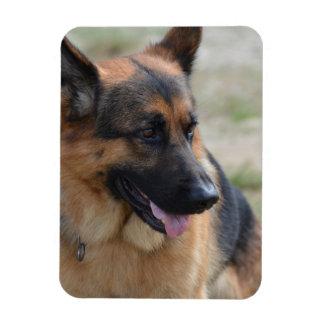 Adorable German Shepherd Rectangular Photo Magnet