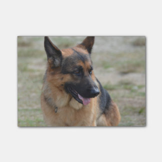 Adorable German Shepherd Post-it Notes