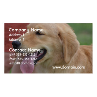 Adorable Golden Retriever Double-Sided Standard Business Cards (Pack Of 100)