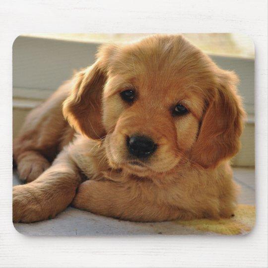 Adorable Golden Retriever puppy dog Mouse Mat