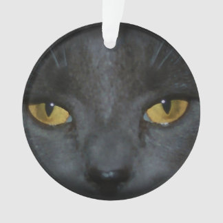 Adorable Gray Kitty Cat Personalized Ornament
