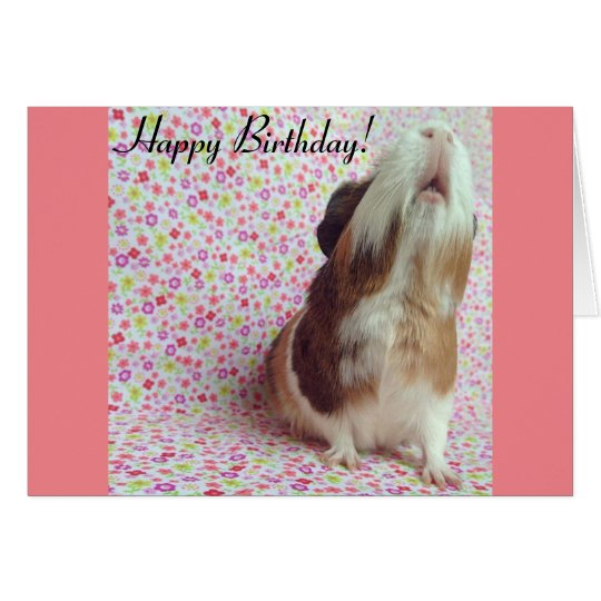 Adorable Guinea Pig Birthday Card