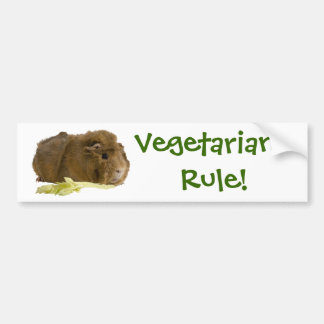 Adorable Guinea Pig Eating Celery Photography Bumper Sticker