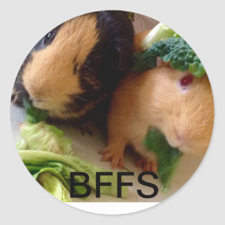 Adorable Guinea Pigs BFF Stickers