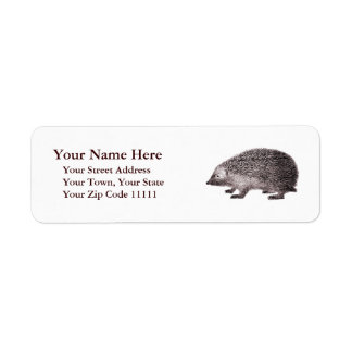 Adorable Hedgehog Antique Engraving Return Address Label
