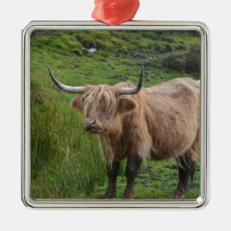 Adorable Highland Cow Silver-Colored Square Decoration