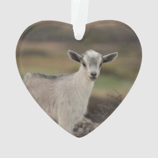 Adorable Kid Goat Ornament