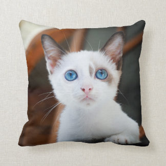Adorable Kitten Throw Pillow