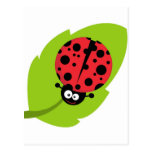 Adorable Ladybug on a Leaf Postcards