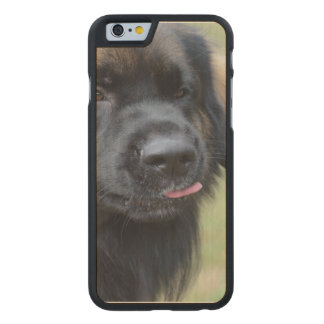 Adorable Leonberger Carved® Maple iPhone 6 Case
