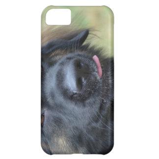 Adorable Leonberger iPhone 5C Cases