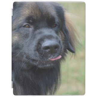 Adorable Leonberger iPad Cover