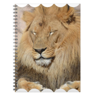 Adorable Lion Spiral Notebook