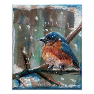 Adorable Little Winter Blue Bird | Photo Print