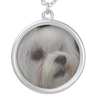 Adorable Maltese Round Pendant Necklace