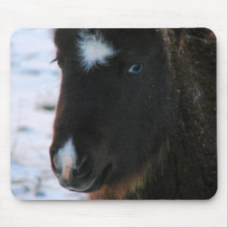 Adorable Mini Horse Filly Mousepads