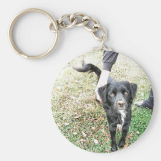 Adorable Mixed Lab Dog Basic Round Button Key Ring