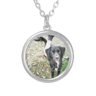 Adorable Mixed Lab Dog Custom Necklace