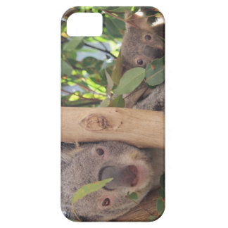Adorable Mother and Baby Koala Barely There iPhone 5 Case