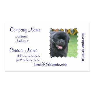 Adorable Newfoundland Pack Of Standard Business Cards