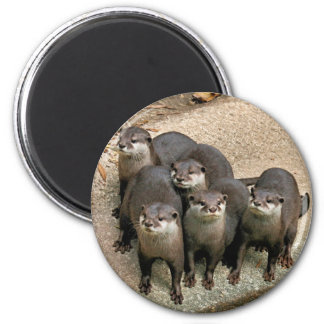 Adorable Otter Family Refrigerator Magnet
