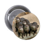 Adorable Otter Family Pin