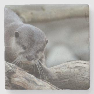 Adorable Otter Stone Coaster