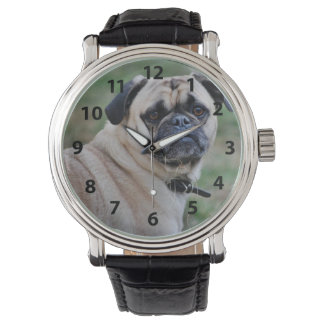 Adorable Pug Watch