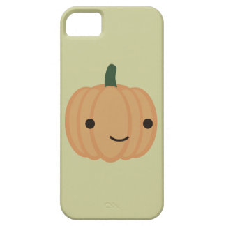 Adorable Pumpkin iPhone 5/5S Covers