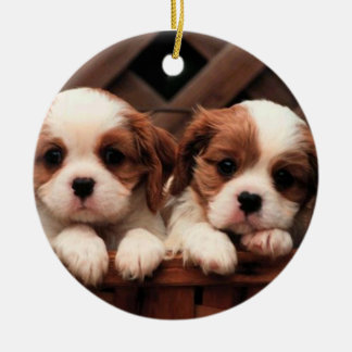 Adorable Puppies Ornament